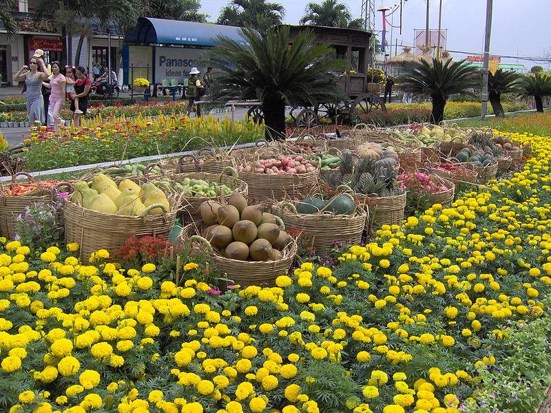 tet vietnam fleur jaune