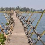 Voir le plus long pont en bambou du Vietnam