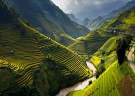 Les Indispensables à savoir avant votre voyage au Vietnam
