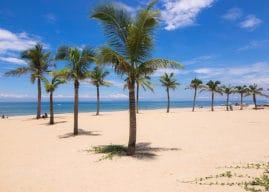 Les plus belles plages de Da Nang
