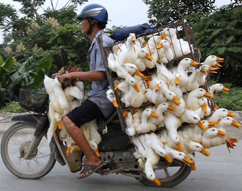 transport-vietnam
