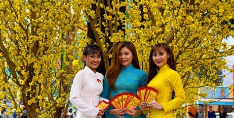 Le Guide ultime sur le Tet au Vietnam et Hoi An